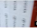 锦程UV平板印刷 (3播放)