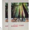 厂家定制A4企业宣传画册目录册印刷设计250克铜板骑马订胶装