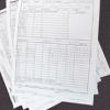 彩色纸双面印刷单黑 表格 日报表