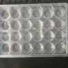 厂家供应食品吸塑托盘 小笼包速冻