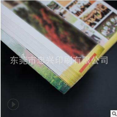 毕业相册精装相册 说明书 公司宣传册说明书广告画册印刷定制